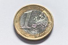 moneta - euro